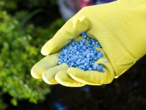 Заинтересованные страны могут обжаловать в ВТО решение Украины квотировать импорт минудобрений фото, иллюстрация