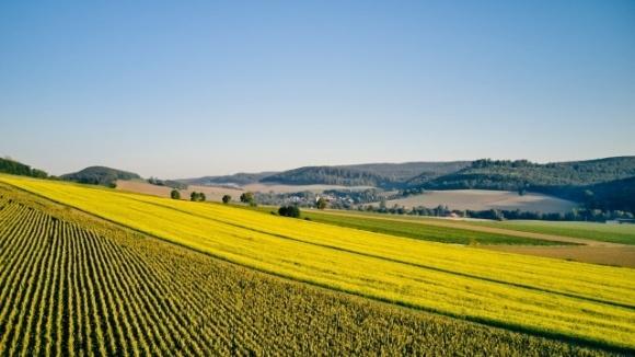 Устойчивое развитие начинается с семян — KWS публикует программу целей социальной и экологической ответственности  фото, иллюстрация