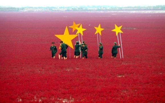 Мегаслияние Syngenta и ChemChina может сделать Китай лидером по производству ГМО фото, иллюстрация