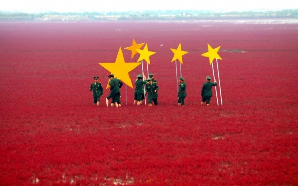 Мегазлиття Syngenta і ChemChina може зробити Китай лідером з виробництва ГМО фото, ілюстрація