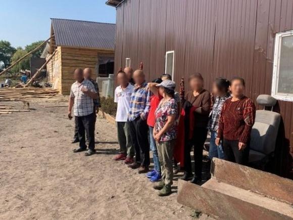 На Київщині правоохоронці затримали групу фермерів-нелегалів із Китаю  фото, ілюстрація