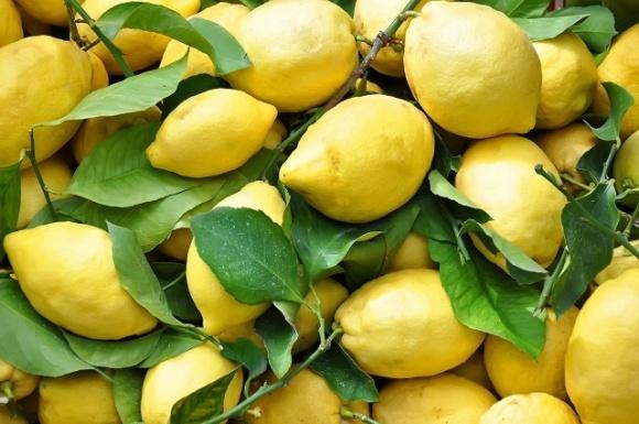 Ціни на лимони можуть оновити рекорд фото, ілюстрація