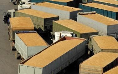 Щороку виробники зерна втрачають на логістиці $600 млн фото, ілюстрація