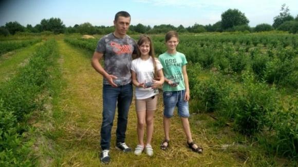 На Волыни фермер собирает голубику с июля и до конца сентября фото, иллюстрация