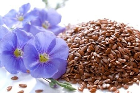 Виробники льону не в змозі конкурувати з іншими олійними фото, ілюстрація