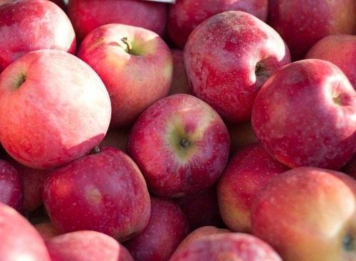 У травні Україною буде експортовано близько 10-12 тис. тон десертного яблука, - УПОА фото, ілюстрація