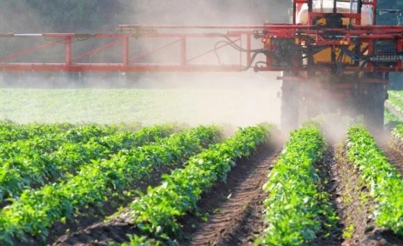 В ЕС навсегда запретили популярный пестицид фото, иллюстрация