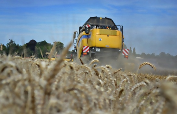Головні аграрні новини тижня, 14-18 серпня фото, ілюстрація