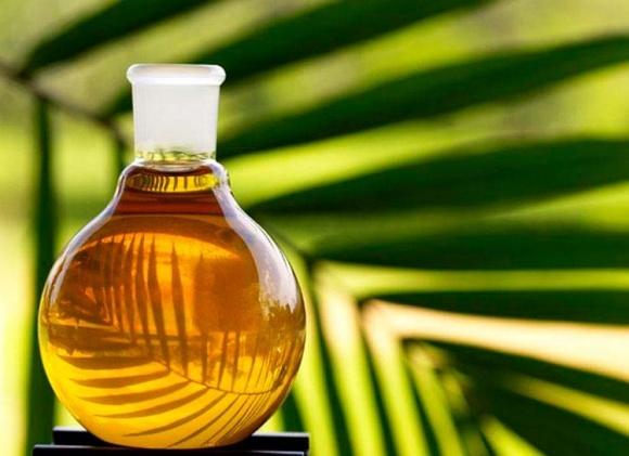 Імпорт пальмової олії в Україну досяг свого максимуму   фото, ілюстрація