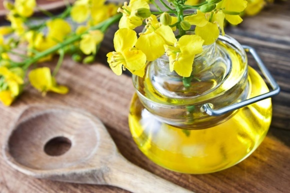 Украина нарастила экспорт подсолнечного и соевого масла фото, иллюстрация