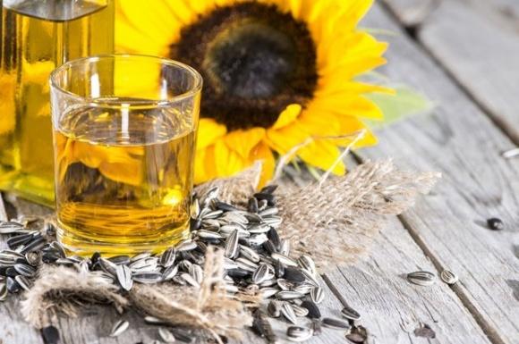 Експорт соняшникової олії залежатиме від цін на її конкурентів фото, ілюстрація