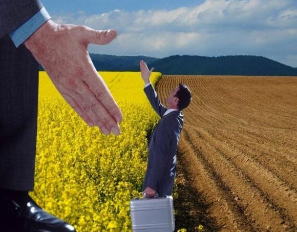 До запровадження ринку землі необхідно прийняти ще цілий ряд законопроектів, - Бакуменко фото, ілюстрація