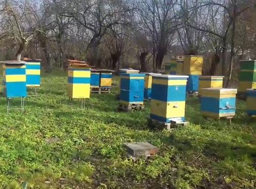 Corteva Agriscience повідомив про реєстрацію в Україні нового фунгіциду фото, ілюстрація