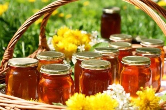 Бджолярі Херсонщини готуються заробляти більше на експорті меду фото, ілюстрація