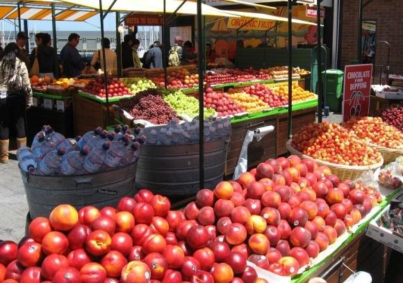 Государство выделит в 2019 году деньги на переработку плодов и овощей фото, иллюстрация