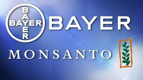 Monsanto и Bayer объединятся на взаимовыгодных условиях фото, иллюстрация