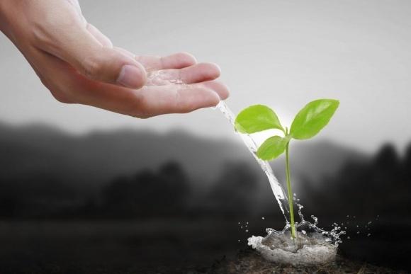 Правительство планирует наращивать производство отечественных минеральных удобрений фото, иллюстрация