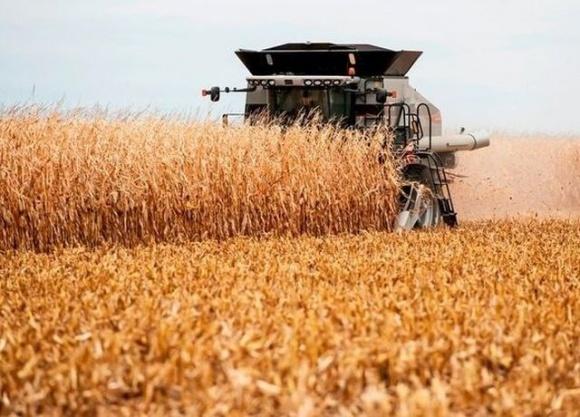 """""""След Коломойского"""": загадочная агрокомпания, едва не ставшая монополистом по контролю за урожаем страны фото, иллюстрация"""