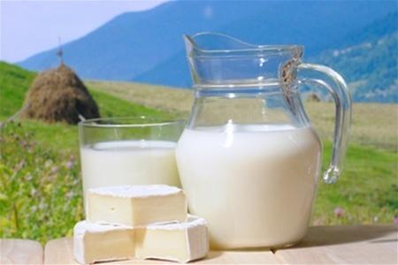 «ЕтноПродукту» не вистачає молочки, щоб задовольнити попит ОАЕ фото, ілюстрація