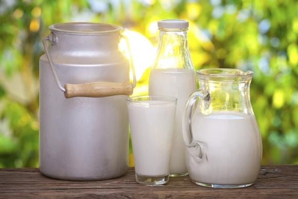 В ЄС очікують підвищення закупівельних цін на молоко і зменшення поголів'я корів фото, ілюстрація