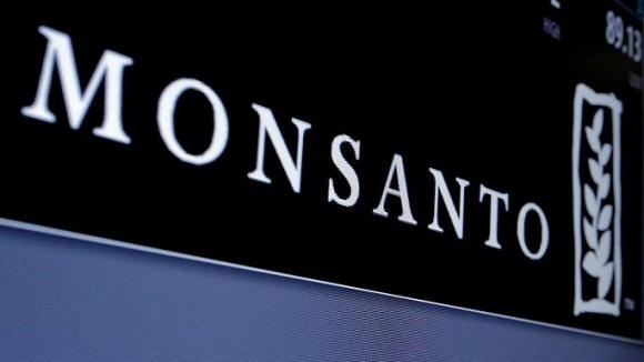 """Monsanto купує в Україні насіннєвий завод кукурудзи """"Ерідона"""" фото, ілюстрація"""
