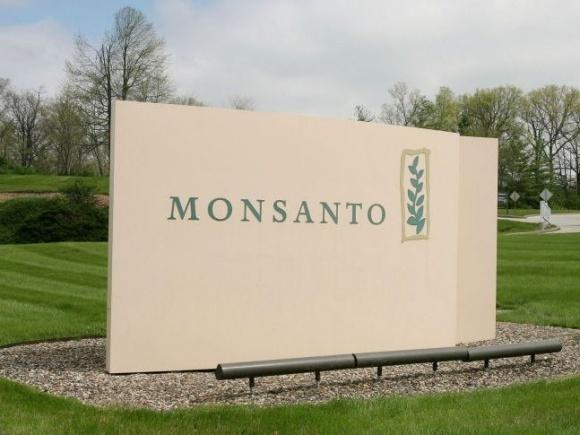Использование протравителей растет из-за не соблюдения севооборота, - Monsanto фото, иллюстрация