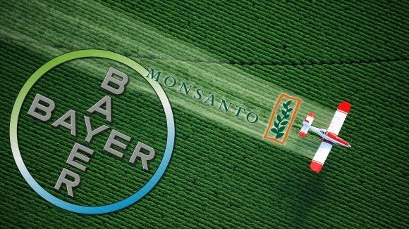 В Германии сомневаются о целесообразности слияния Monsanto с Bayer  фото, иллюстрация
