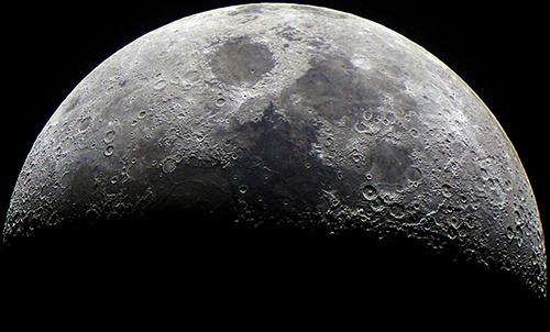Росток бавовни загинув на Місяці: вчені розповіли про подію в космосі фото, ілюстрація