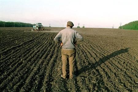 Экономисты выступили против продления моратория на землю фото, иллюстрация