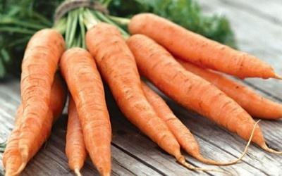 Цена на морковь продолжает падать фото, иллюстрация