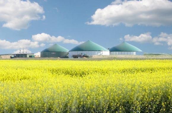 Порошенко подписал закон об отмене регистрации производителей биогаза фото, иллюстрация