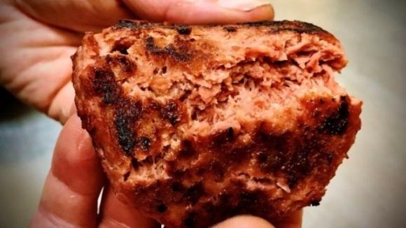 М'ясо з конопель виведуть на ринок у 2021 році фото, ілюстрація
