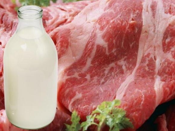 На Житомирщине приоритетным является развитие молочного и мясного скотоводства фото, иллюстрация