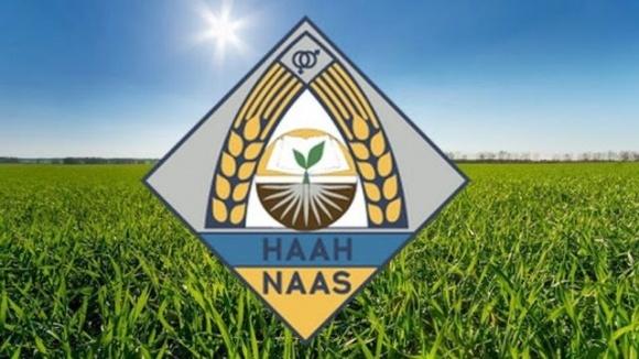 У НААН під урожай наступних років готуються гібриди кукурудзи, які потенційно можуть дати до 17 т/га фото, ілюстрація