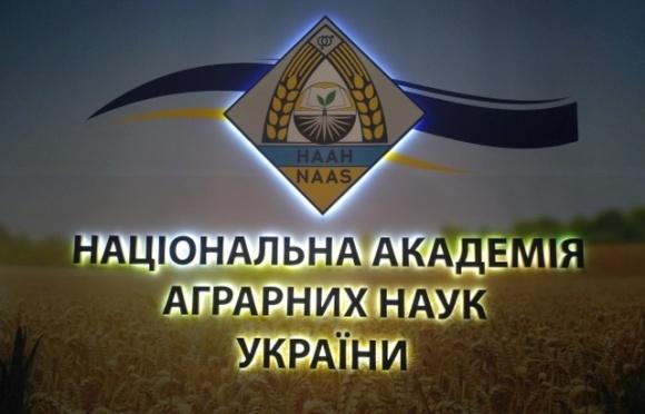 За 4 роки відкрито більше 300 кримінальних проваджень щодо НААН, — Милованов фото, ілюстрація