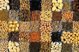 Держава відшкодовуватиме до 80% вартості насіння фото, ілюстрація