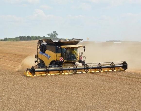 Українські агрохолдинги, точніше, їх підрозділи, не надто відрізняються від нехолдингових підприємств за ефективністю, — дослідження фото, ілюстрація