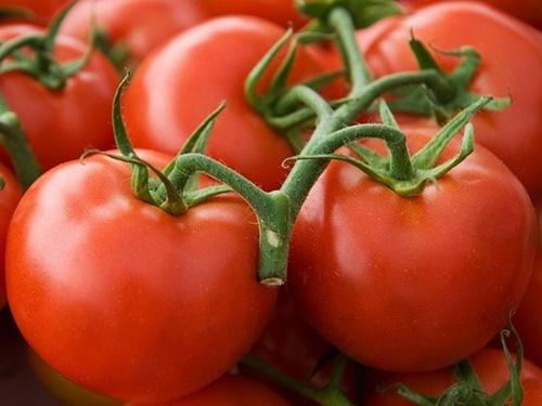 Подальше зниження цін на томати на українському ринку майже неможливе, – УПОА фото, ілюстрація