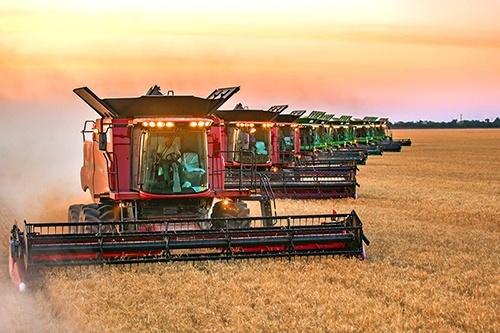 У «Нібулоні» наближається до завершення збиральна кампанія ранніх зернових фото, ілюстрація