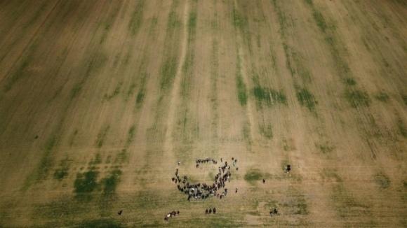 Аграрии Одесской области уже в третий раз обращаются к Зеленскому и Кабмину из-за засухи фото, иллюстрация