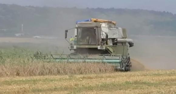 В Одесской области оппозиционеры призвали власти спасти фермеров от банкротства  фото, иллюстрация