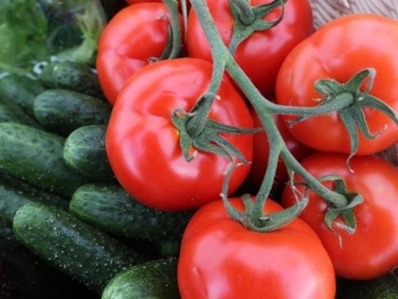 Україна нарощує імпорт томатів та огірків навіть у розпал сезону фото, ілюстрація