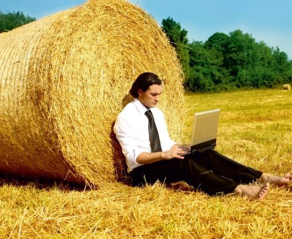 В Украине появился новый проект для содействие аграрному образованию фото, иллюстрация