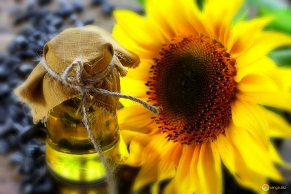 Україна випередить Росію з експорту соняшникової олії - експерти фото, ілюстрація