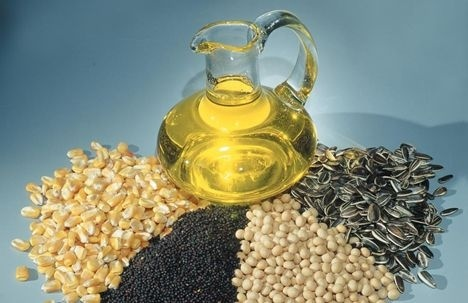 Отмена возмещения НДС при экспорте масличных культур позволит привлечь до 600 млн долл инвестиций фото, иллюстрация
