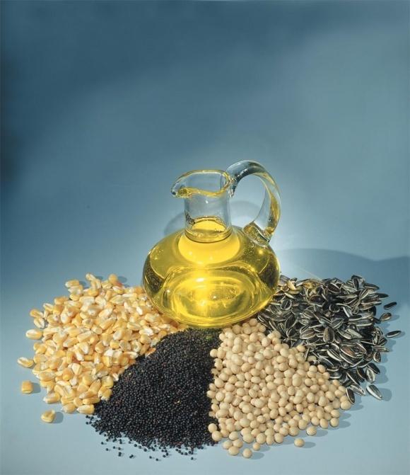 Опубліковано підсумкові дані про збір урожаю олійних культур фото, ілюстрація