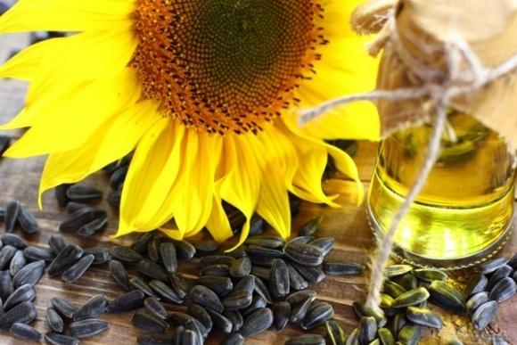 Высокоолеиновое масло стоит на 13% дороже обычного подсолнечного фото, иллюстрация