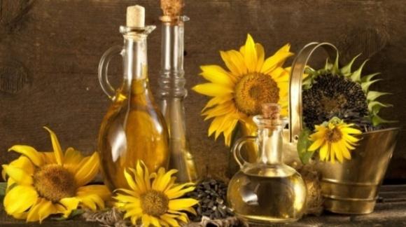 2019 року найбільше українських олійних культур імпортувала Німеччина, олії – Індія, – Інститут аграрної економіки фото, ілюстрація