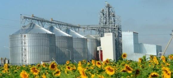 Весной ожидается открытие трех заводов по переработке подсолнечника фото, иллюстрация