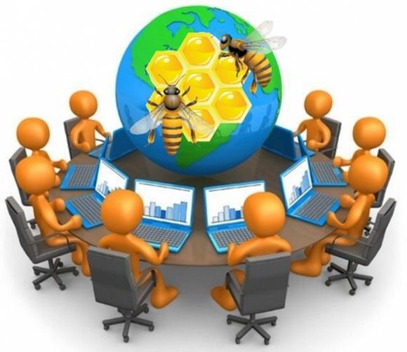 В Минэкономики подвели итоги по результатам проведения онлайн-семинаров для пасечников фото, иллюстрация